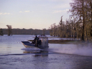 Air Boat Hunts
